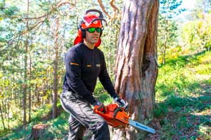 Hemkomstkontroll SmartDok Skogsindustrin